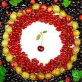 czerwoni i czarni rodzynki, agresty, malinki Fotografia Stock