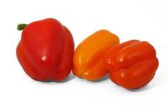 Czerwoni i pomarańczowi dzwonkowi pepers Obrazy Stock