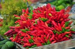 Czerwoni i zieleni pieprze Fotografia Stock