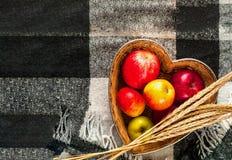 Czerwoni jabłka w słomianej wazie na W kratkę szkockiej kracie Pojęcie wygoda i coziness zdjęcie royalty free
