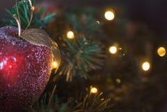 czerwoni jabłczani boże narodzenia Fotografia Stock