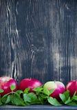 Czerwoni jabłka, dekorujący z nowymi liśćmi przeciw ciemnemu tłu fotografia royalty free