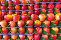Czerwoni jabłka dla sprzedaży przy rynkiem zdjęcie stock