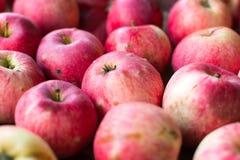 Czerwoni jabłka na drewnianym stołowym tle Obraz Royalty Free
