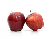 Czerwoni jabłka opierają przeciw each inny odizolowywają na białym tle Fotografia Stock
