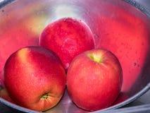 Czerwoni jabłka w stali nierdzewnej rzucają kulą z kroplą woda Obrazy Royalty Free