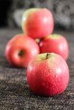 Czerwoni jabłka z ciemnego brązu tłem Fotografia Royalty Free