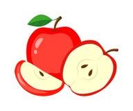 Czerwoni jabłka z Zielonymi liśćmi, Jabłczanym plasterkiem i połówką, Wektor ja Zdjęcia Royalty Free