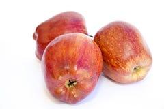 Czerwoni jabłka Fotografia Stock
