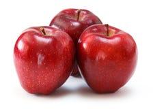 Czerwoni jabłka Zdjęcia Stock