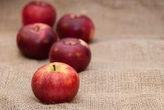 Czerwoni jabłka na parcianym tle obrazy royalty free