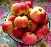 Czerwoni jab?ka na stole zdjęcia royalty free