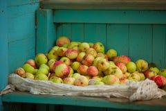 Czerwoni jabłka na stole Fotografia Royalty Free
