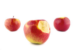 Czerwoni jabłka Trzy Zdjęcie Royalty Free
