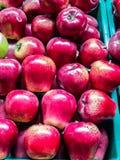Czerwoni jabłka w plastikowych skrzynkach Zdjęcie Royalty Free