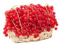 czerwoni koszykowi rodzynki Fotografia Royalty Free