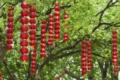 Czerwoni lampiony Fotografia Stock