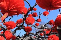 Czerwoni lampiony i inny tradycyjni chińskie wystrój Obraz Stock