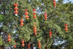 Czerwoni lampiony w chińczyka parku Obrazy Royalty Free