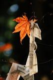 Czerwoni liścia klonowego i papieru życzenia Obrazy Stock