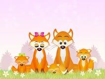 Czerwoni lisy w lesie ilustracji