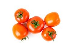 Czerwoni organicznie świezi pomidory Obrazy Stock