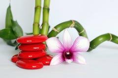 Czerwoni otoczaki układali w Zen stylu życia z brzmienie orchideą na prawej stronie kręcony bambusowy ustawiający za całością na  zdjęcie royalty free