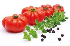 czerwoni pomidory Obraz Royalty Free