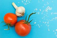 Czerwoni pomidory, czosnek i sól na błękitnym tle, obrazy royalty free