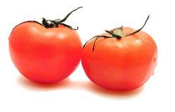 czerwoni pomidory dwa Zdjęcia Royalty Free