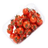 Czerwoni pomidory na gałąź na kształtnym talerzu odizolowywającym na bielu Obrazy Royalty Free