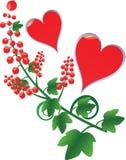 czerwoni porzeczkowi serca Fotografia Stock