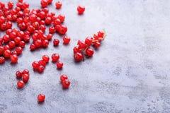 Czerwoni rodzynki Fotografia Royalty Free