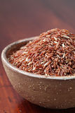 czerwoni ryż Zdjęcie Royalty Free