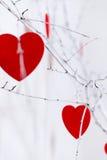 Czerwoni serca wiesza na drzewie Zdjęcia Royalty Free