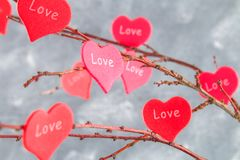 Czerwoni serca z wpisowym miłości zrozumieniem na gałąź na szarości betonują tło odosobnionego loga miłości przedmiota znaka drze Obraz Stock