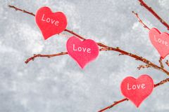 Czerwoni serca z wpisowym miłości zrozumieniem na gałąź na szarości betonują tło odosobnionego loga miłości przedmiota znaka drze Obraz Royalty Free
