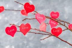 Czerwoni serca z wpisowym miłości zrozumieniem na gałąź na szarości betonują tło odosobnionego loga miłości przedmiota znaka drze Obrazy Royalty Free