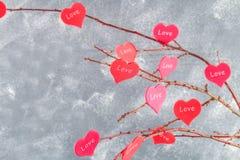 Czerwoni serca z wpisowym miłości zrozumieniem na gałąź na szarości betonują tło odosobnionego loga miłości przedmiota znaka drze Zdjęcia Stock