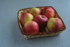 Czerwoni soczyści jabłka Obrazy Royalty Free