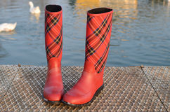 Czerwoni tartanów buty Obraz Stock