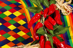 czerwoni tkanina pieprze świąteczni gorący Zdjęcie Stock
