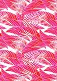 Czerwoni tropikalni liście Zdjęcia Royalty Free