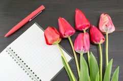 Czerwoni tulipany i notebbok obrazy stock