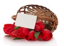 Czerwoni tulipany i opróżniają kartę Fotografia Stock