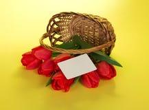 Czerwoni tulipany które opuszczali z kosza zdjęcie royalty free