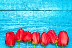 Czerwoni tulipany na błękitne deski Fotografia Stock