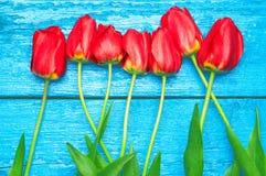 Czerwoni tulipany na błękitne deski Zdjęcia Royalty Free