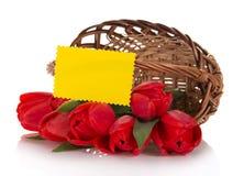 Czerwoni tulipany w koszu i pustej karcie Zdjęcie Royalty Free
