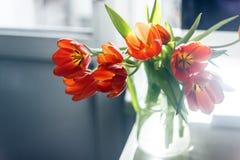 Czerwoni tulipany w waza stojaku blisko komputerowego monitoru Poj?cie wiosna wystr obraz stock